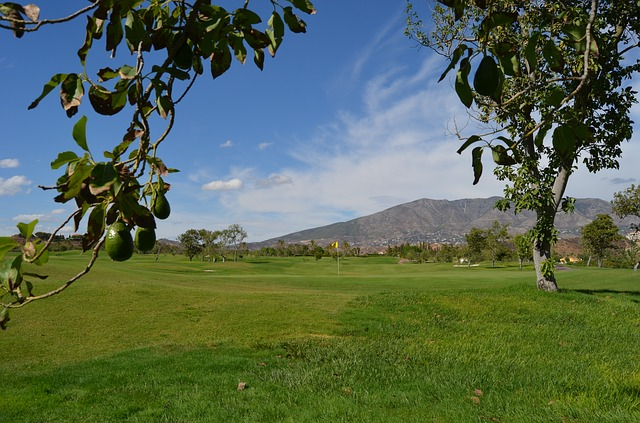 Highly Effective And Simple Golf Tips That Work Well