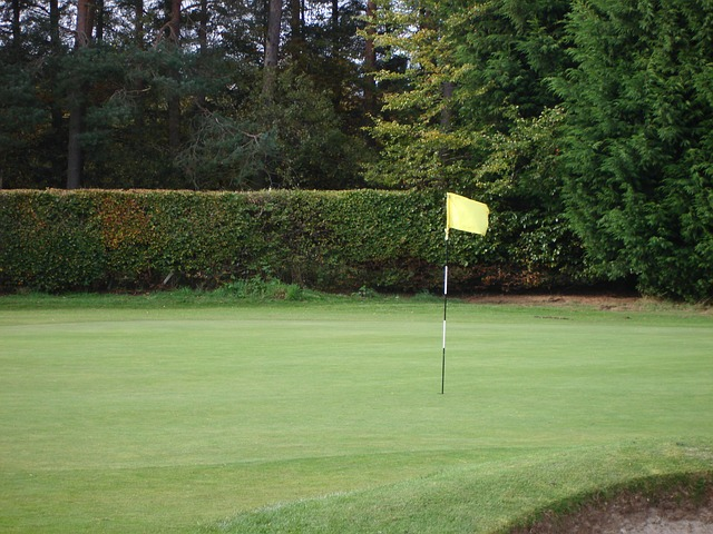 Questions About Golf? Find The Answers Here!