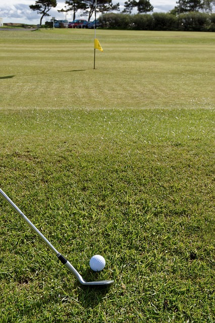Interested In Knowing More About Golf? Check Out The Article Below